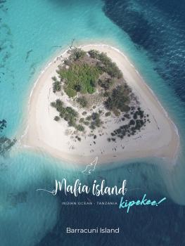 barracuni_in_mafia_island_2