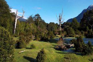 terreno-palena-ID-patagonia-horte-real-estate-propiedades_14