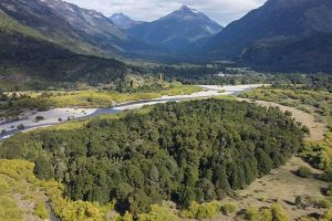 terreno-palena-ID-patagonia-horte-real-estate-propiedades_27